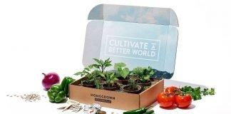 Chipotle new Homegrown Garden Box