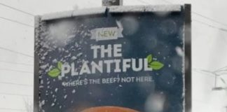 Wendy's New Plant-Based Plantiful Burger